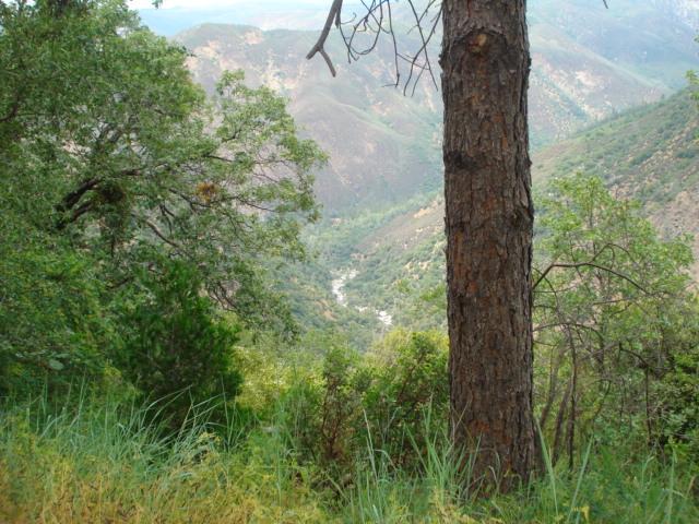 Yosemite Ca 2009 034