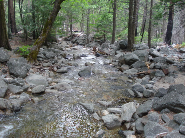 Yosemite Ca 2009 069