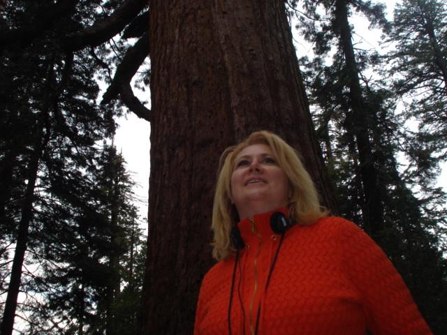 Yosemite-Wawona 2009 185