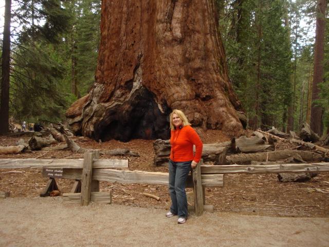 Yosemite-Wawona 2009 183